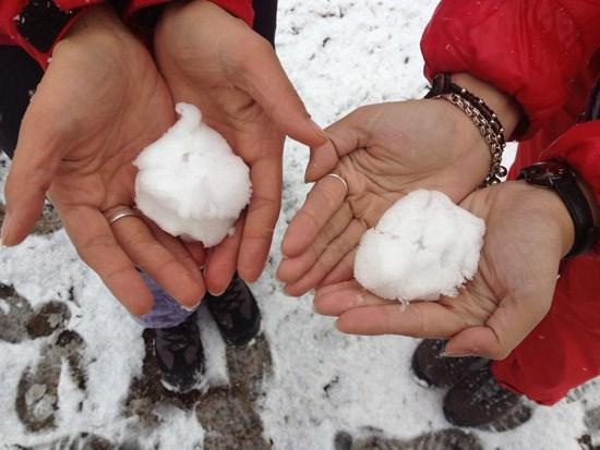 Sa Pa tuyết rơi đẹp mê hồn_images2