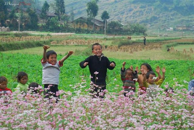 Du lịch Hà Giang 3 ngày 2 đêm_images3