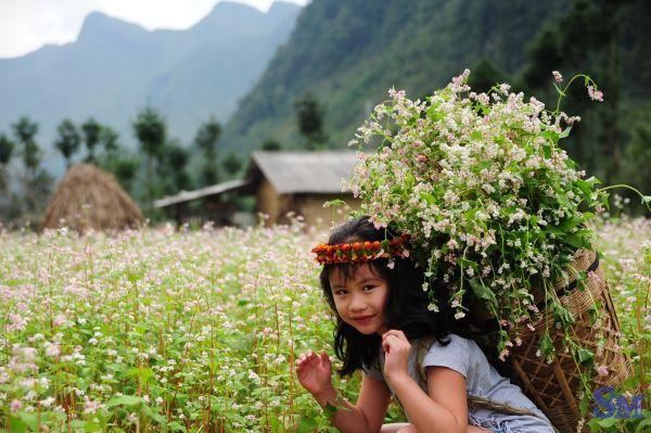 Du lịch Hà Giang 3 ngày 2 đêm_images2