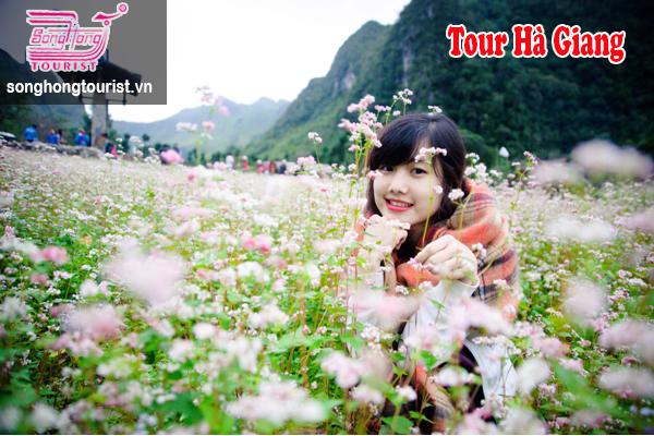 Du lịch Hà Giang 3 ngày 2 đêm_images0