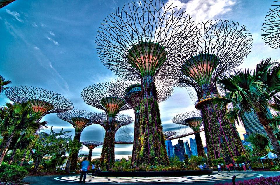 Illustration HÀ NỘI - SINGAPORE - MALAYSIA