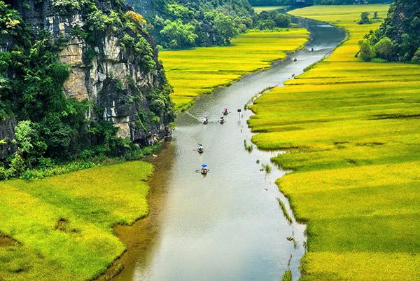 Hình ảnh của Tour Hang Múa - Tam Cốc 1 ngày