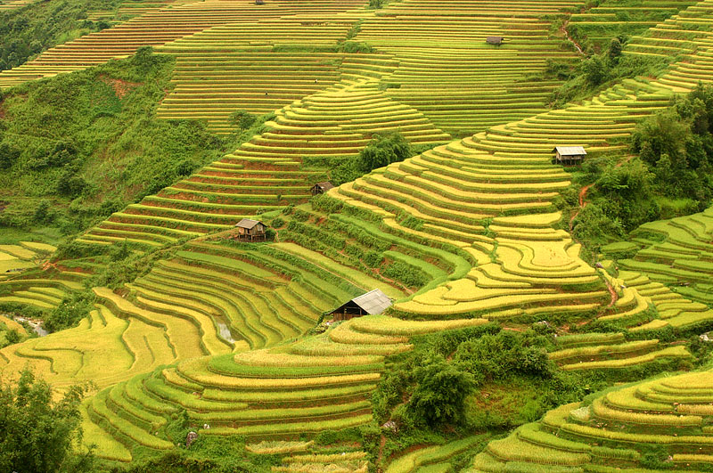 Image result for du lịch hà giang